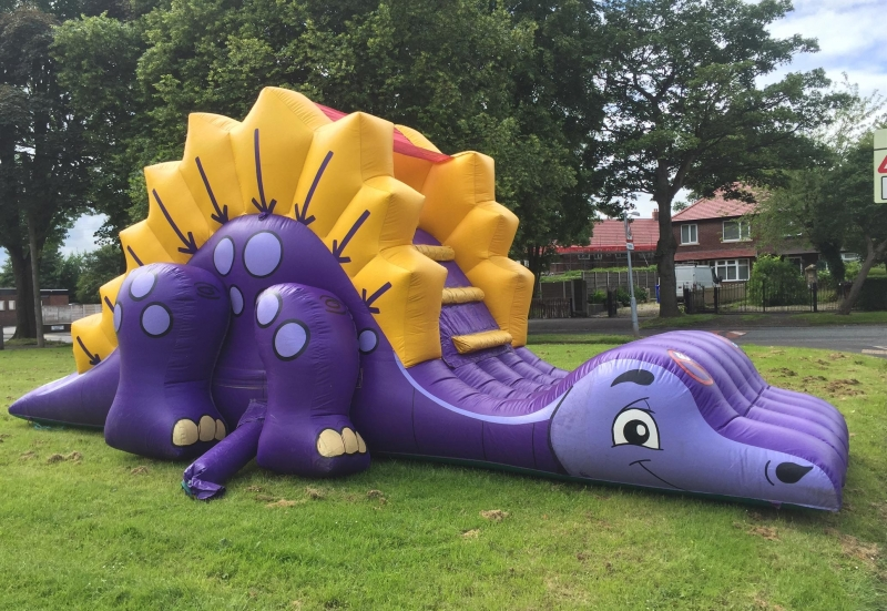 Dinosaur Assault Course And Slide